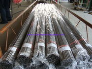 Cold Rolld Instrument Bright Annealed Tube ASTM A269 / ASME SA269 TP317L Stainless Steel Seamless Tube 6096mm